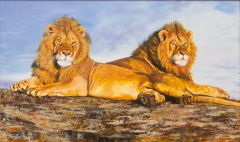 Simba Brothers